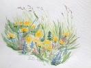 Blumenwiese (VERKAUFT)
